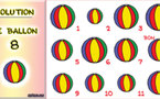 Solution du jeu d'observation du 24 mai 2009