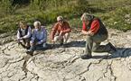Découverte des plus grandes empreintes de dinosaure au monde
