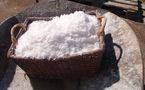 Le sel, un aliment indispensable : de la sacralité à l'impôt et la diabolisation