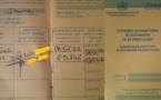 La fièvre jaune tue encore en Guyane