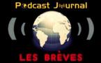 Une tortue luth échouée en Espagne