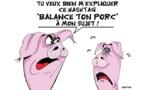 Les porcs répliquent
