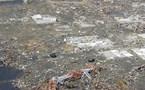 Prévention des catastrophes: L'UNESCO et l'OTICE renforcent leur coopération