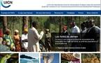 POLÉMIQUE SUR LE CHANGEMENT CLIMATIQUE: L'ONU rejette les thèses sceptiques