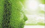 Examen de l'impact de l'économie verte sur la société et l'environnement