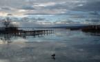 L'IMAGE DU JOUR: Lac Neusiedl ou lac Fertő