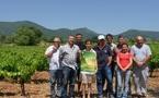 Les vignerons coopérateurs du Var en fête