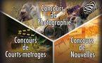 Concours de Photos, Nouvelles et Courts-métrages - Non au piston, oui au talent!