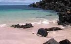 Les Galápagos