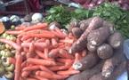 Premier forum pour une révolution verte : les Africains au chevet de leur agriculture