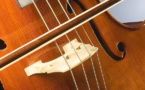 IMAGE DU JOUR: Violoncelle