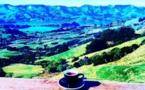 Voyage sur la terre des Maoris