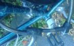 L'IMAGE DU JOUR: Antivol de vélo