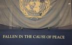 Egypte: Au nom du respect des droits de l'homme !
