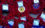 Les poppies, symbole anglais de la Grande Guerre