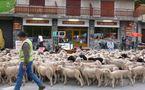 ECO-TOURISME: animations et menu Chèvre de printemps à la carte des Bistrots de pays azuréens