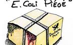 DESSIN DE PRESSE - E.Coli Piégé