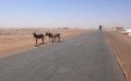 Ca s'est passé ces derniers jours en Mauritanie