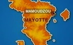 Mayotte: Fixation du prix de la viande de boeuf