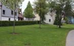 Berlin : Une polémique éclate après l'apparition d'espaces réservés aux dealers dans un parc