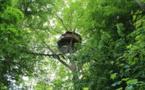 """Calvados: une nuit dans un """"Nid d'aigle"""", la plus haute cabane d'Europe"""