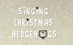 La sélection d'Eva: Spécial Noël avec les hérissons
