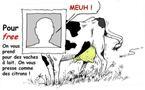 DESSIN DE PRESSE: Mammouth écrase les prix, Free aussi