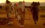 Chanson à la Une - Paradise, par Coldplay