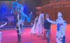 Cirque: Le palmarès de New Generation