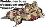 DESSIN DE PRESSE: Sonnette d'alarme