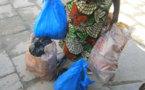 Prolifération des déchets plastiques: A quand une mesure forte au Bénin?