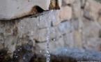 L'IMAGE DU JOUR – L'eau, source de vie