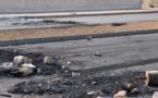 L'IMAGE DU JOUR – Brûler les pneus