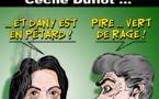 DESSIN DE PRESSE: Durand succède à Duflot