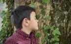 Confinement : enfants en manque de nature