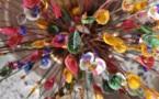 L'IMAGE DU JOUR – Des coquillages fleurs