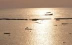 L'IMAGE DU JOUR – Bateau de pêcheur