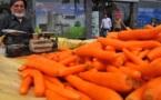 L'IMAGE DU JOUR – Le marchand de carottes