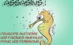 DESSIN DE PRESSE: Les poissons roulés dans la farine