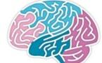 Le cerveau et l'alimentation