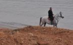L'IMAGE DU JOUR – Equitation à la mer