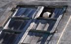 L'IMAGE DU JOUR – Pigeon à la fenêtre