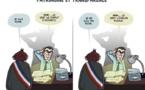 DESSIN DE PRESSE: Patrimoine et transparence
