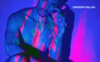 Gregory Dillon sur la piste de danse avec Lovely (Stone Van Brooken Remix)