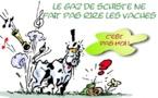 DESSIN DE PRESSE: Le gaz de schiste, source de polémique