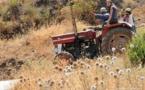 L'IMAGE DU JOUR – Sur le tracteur