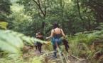 Au-delà de Lyme : les autres maladies transmises par les tiques