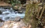 L'IMAGE DU JOUR – L'eau de la rivière