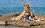L'IMAGE DU JOUR – L'Ile du pêcheur