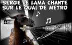 DESSIN DE PRESSE: Feux de la rampe du tram pour Serge le lama
